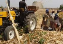 Agricultural Development In Nigeria